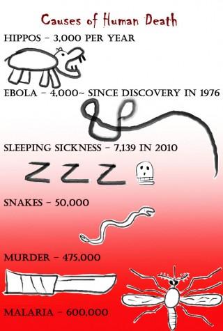 Ebola comes to America