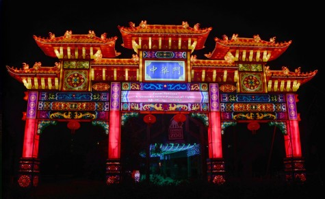 Light up your night at Lowry Park's Zoominations