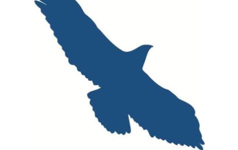 Hawks making late season push