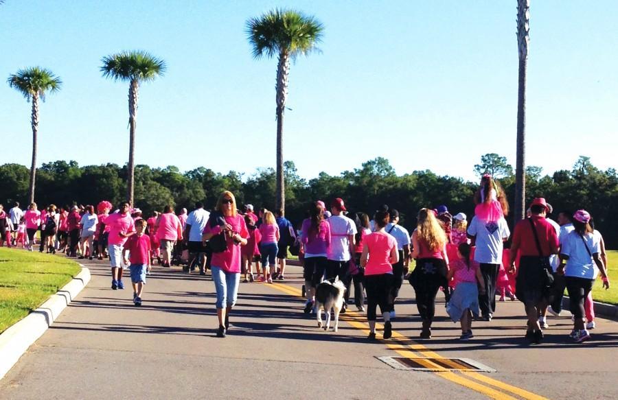 Walking warriors raising awareness in Wesley Chapel.