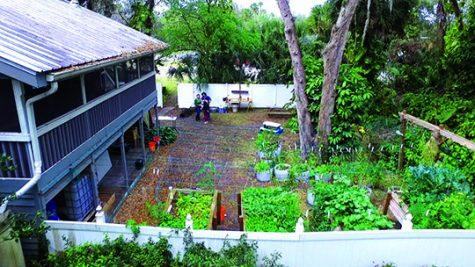 Sustainability at Alafia Farms