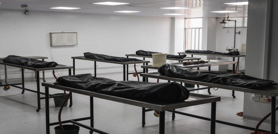 The secret life of an American cadaver